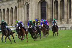 Retour des courses à Chantilly