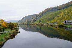 vallée de la Moselle