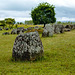 The Plain of Jars (Site 1)