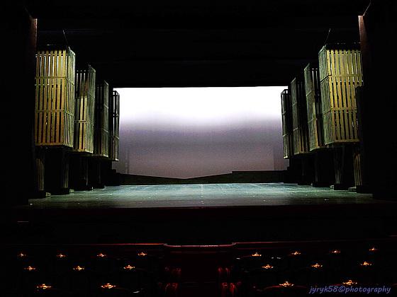 Palais Garnier - Opéra National de Paris (20)