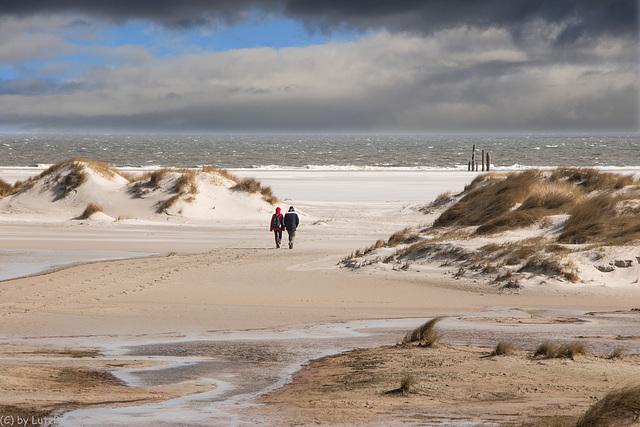 Walking the Beach  (240°)