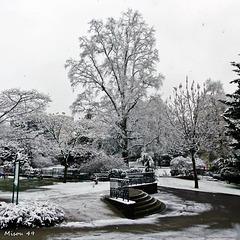 Neige à Angers