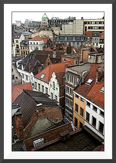 Les toits de Bruxelles V