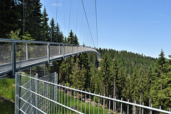 WildLine Hängebrücke und ein Zaun!