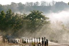 Haut-Cantal : Chemin et  reste de brume