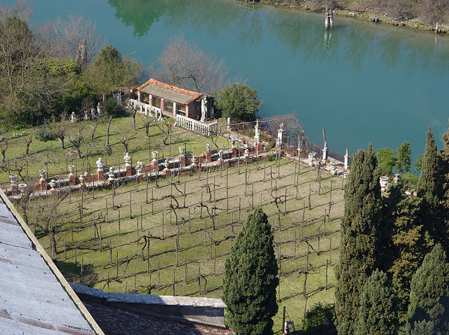 Vinyard with statues