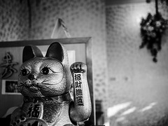 Good-luck cat / Gato buena suerte / Chat de bonne chance