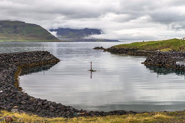 Borgarfjarðarhöfn (PiP)