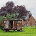 Derelict Shepherd's Hut (+PiP)