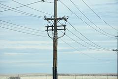 CMH 13.8kV - Cypress County, AB