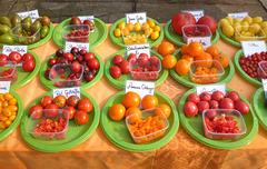 Tomatenverkostung 2018 - Birgit Kempe - Altjessen