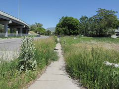 Salt Lake City disappearing sidewalk.