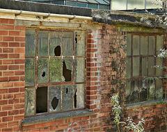 Window 5&6