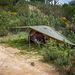 Lightweight Tent & Tarp Combi 1