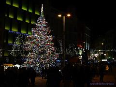 Christmas Tree - Náměstí Svobody