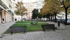 Small garden between Benfica's blocks - II