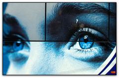 Behind Blue Eyes (pls. enlarge)