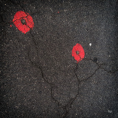 Ground Markings 25/50 - The Red Ones