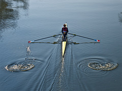 the lonely sculler III