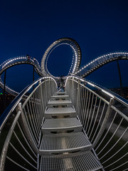 Magic Mountain - Tiger and Turtle (060°)