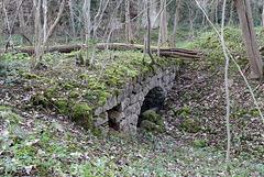 Hawks Wood