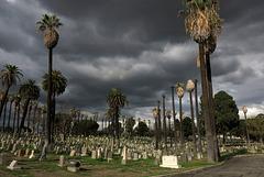 Angelus Rosedale Cemetery (1986)