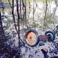 wheels in the lake
