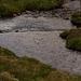 raining Shelf Brook at Mossylea