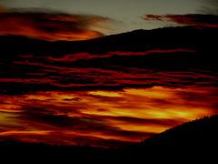 1 (57)..austria ..analog..scan...sunrise, evening