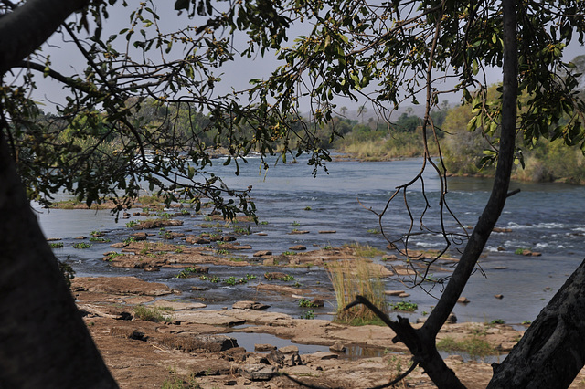 La rivero Zambezi antaŭ la akvofalo. Estas la seka sezono, kaj la rivero enhavas ne tro da akvo