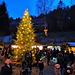 Allen Fotofreunden wünsche ich einen besinnlichen 1. Adventssonntag und eine besinnliche Vorweihnachtszeit! (+ 6 PiPs)