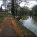 denuded towpath