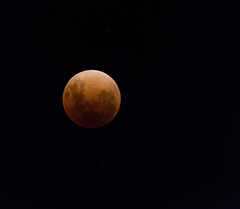 The moon at total Eclipse.