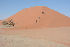 Namibia, The Initial Stage of the Trekking Route along the Dunes of the Sossusvlei National Park