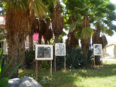 Outdoor paintings display.