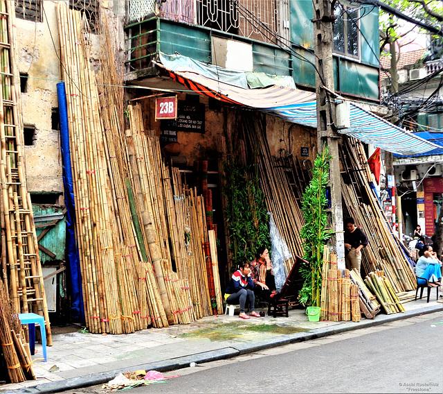 Vietnam 2016 / Hanoi 1xPiP  Bamboo Variations