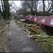 British Waterways tree felling