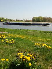 Auf der Elbe bei Altengamme
