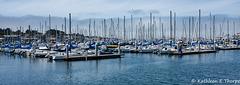 Monterey Fishermans Wharf Marina 002