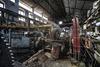 sugar mill Bulkeley - 4