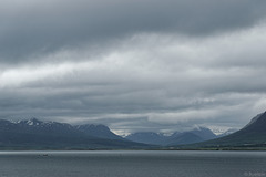 Blick über den Eyjafjörður (© Buelipix)