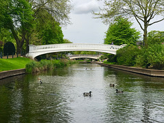 River Sow, Stafford