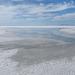 Favorite salt and saltwater landscape.