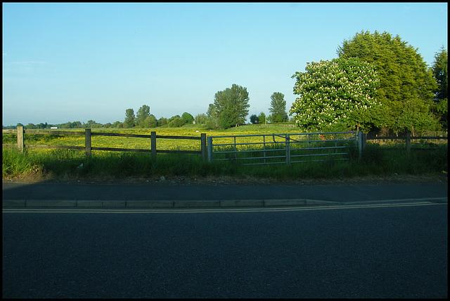 a field near Manchester