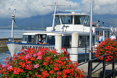Umsteigen auf das Kursschiff Ville d`Estavayer, in Etavayer le Lac nach Yverdon les Bains