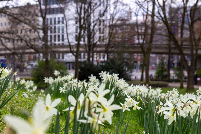 2021-04-21 Frühling in Bremen