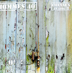 Hommes 40, Chevaux En Long 8