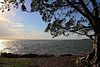 Wellington Point, Queensland, Australia