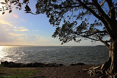 Wellington Point, Queensland, Australia