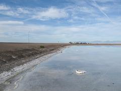 Utah scenery of saltwater floating on salt, interrupted by a road embankment.